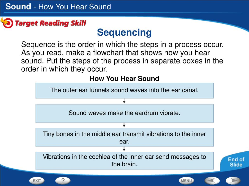 - How You Hear Sound