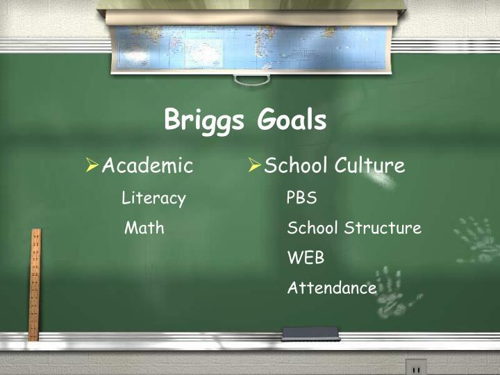 Briggs Goals