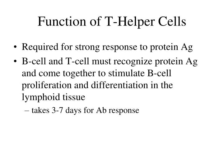 Function of T-Helper Cells