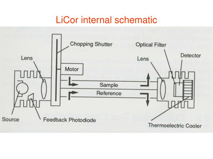 Licor internal schematic