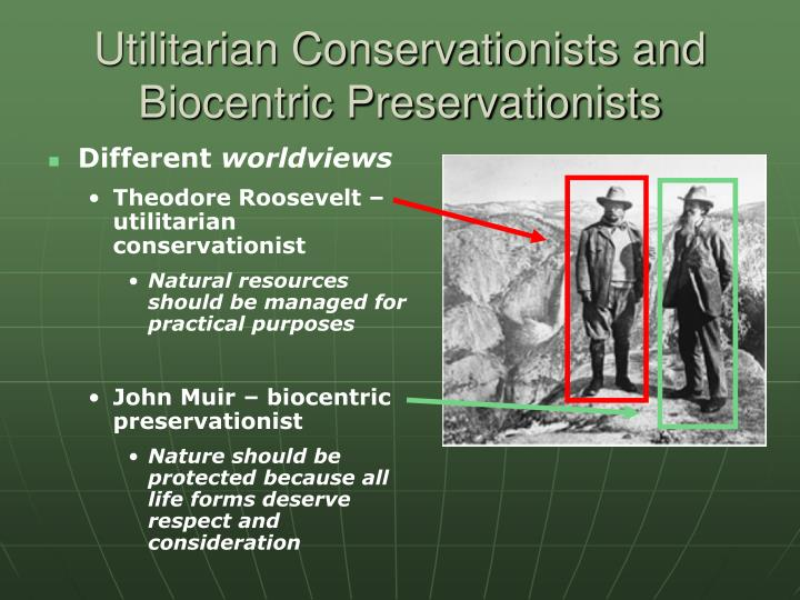 Utilitarian Conservationists and Biocentric Preservationists