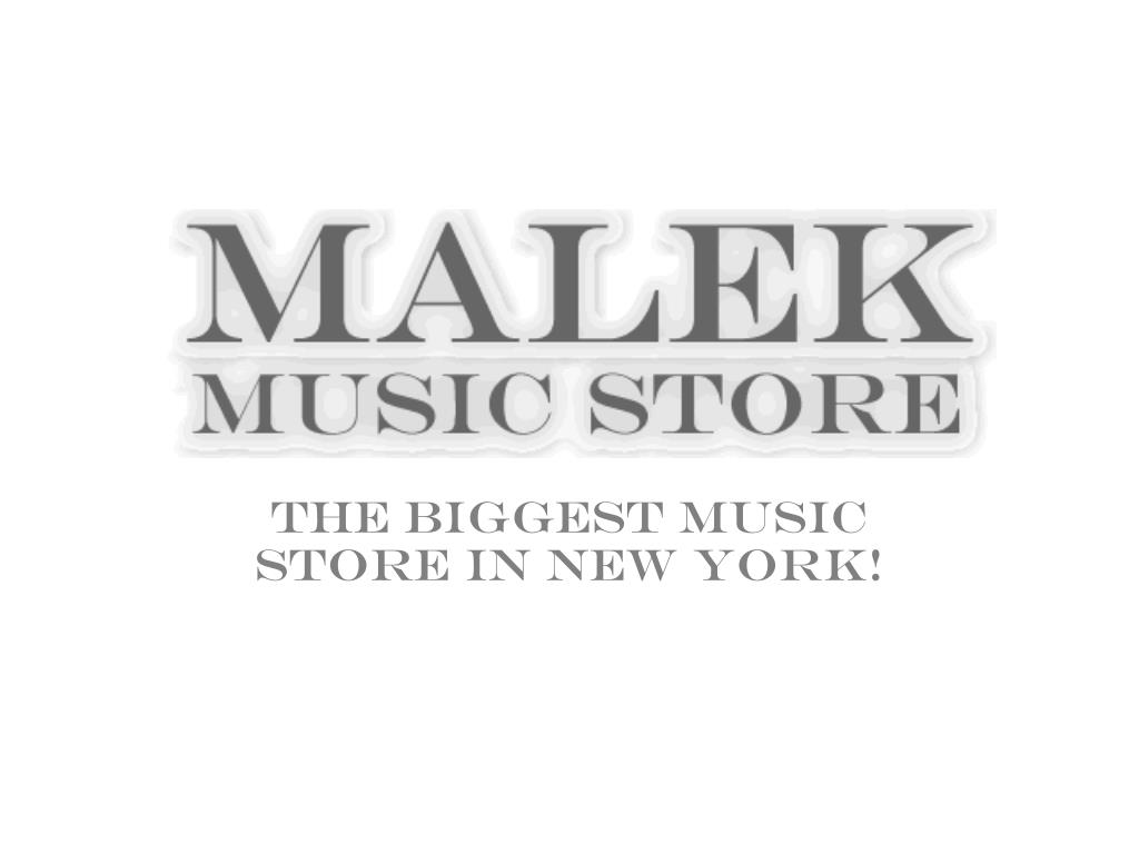 the biggest music store in new york