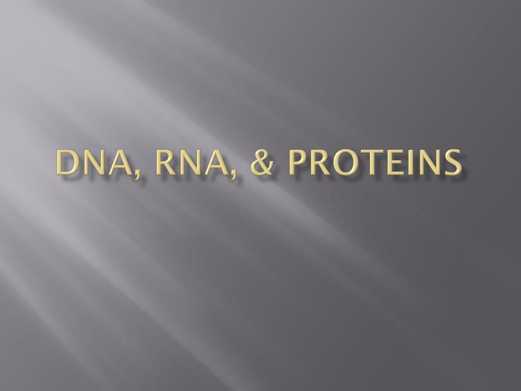 DNA, RNA, & Proteins