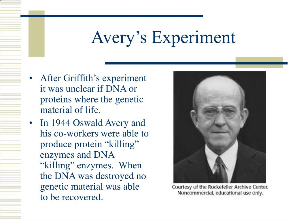 Avery's Experiment