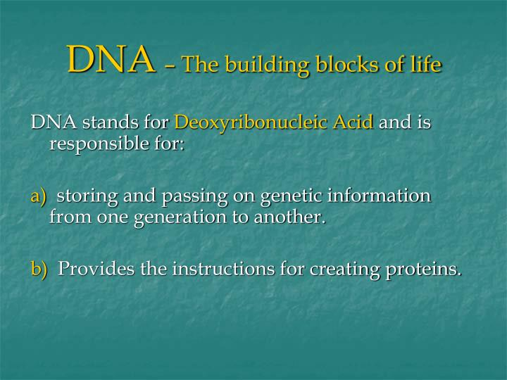 Dna the building blocks of life2