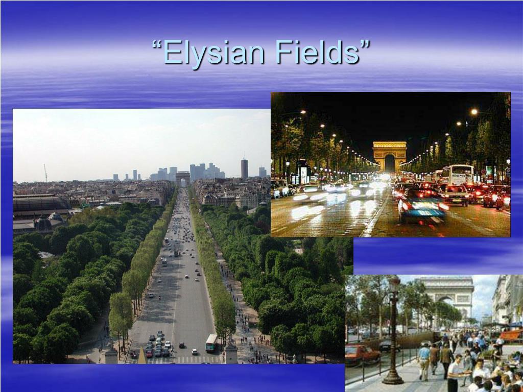"""""""Elysian Fields"""""""