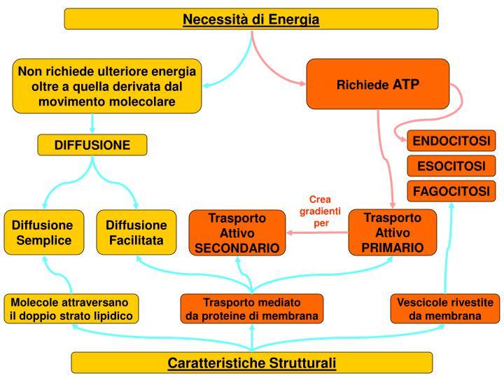 Necessità di Energia
