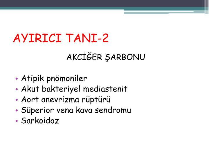 AYIRICI TANI-2