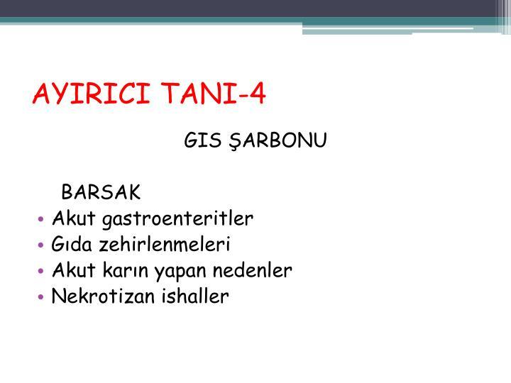AYIRICI TANI-4
