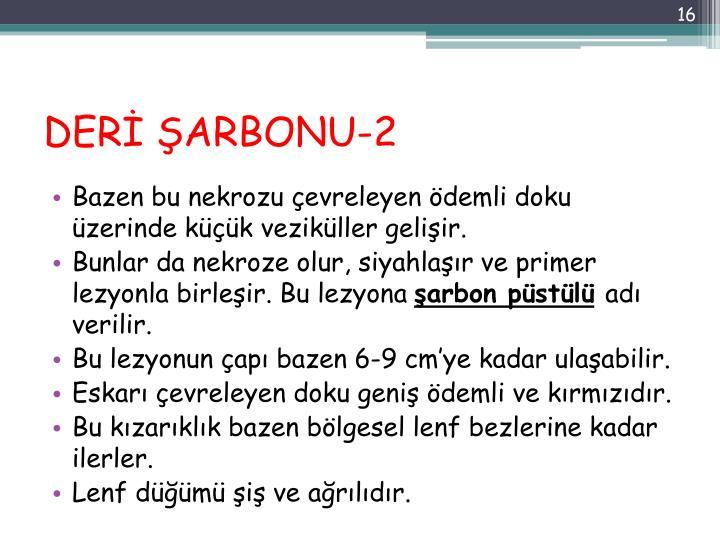 DERİ ŞARBONU-2