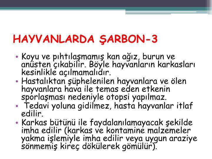 HAYVANLARDA ŞARBON-3