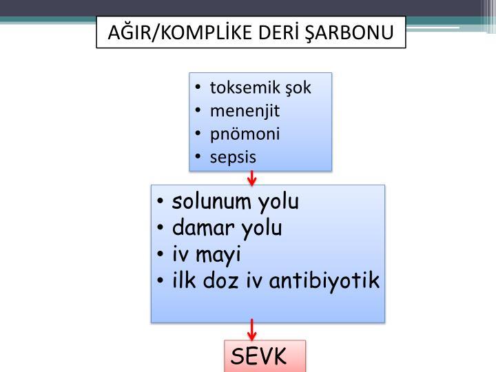 AĞIR/KOMPLİKE DERİ ŞARBONU
