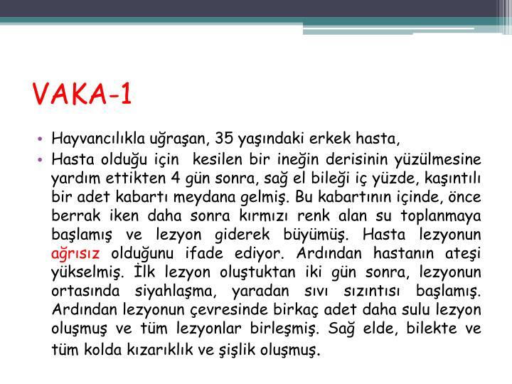 VAKA-1