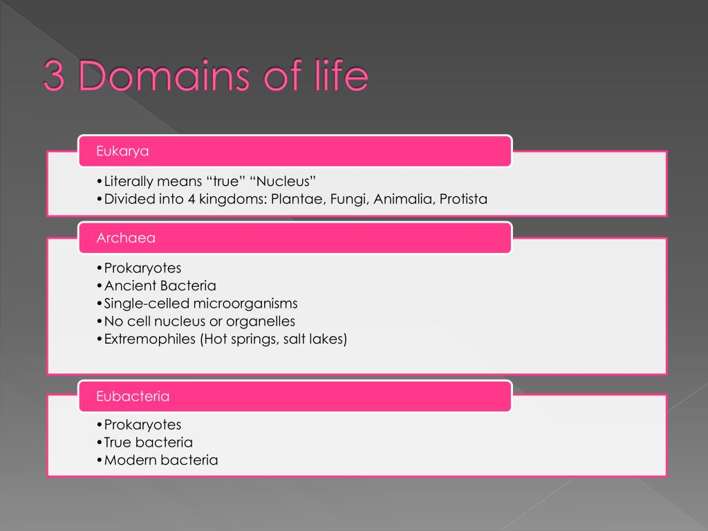 3 Domains of life