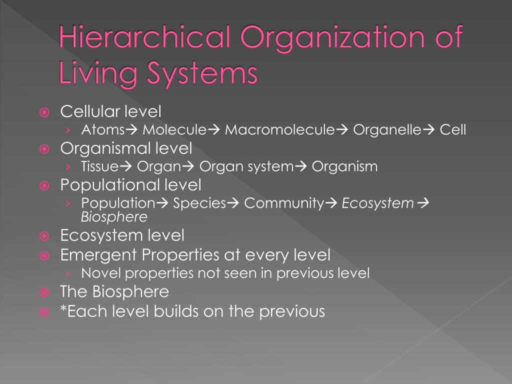 Hierarchical Organization of Living Systems