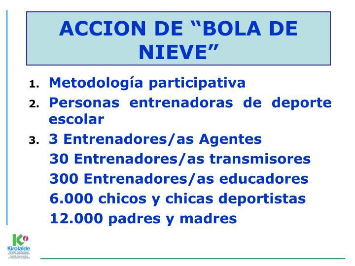 """ACCION DE """"BOLA DE NIEVE"""""""