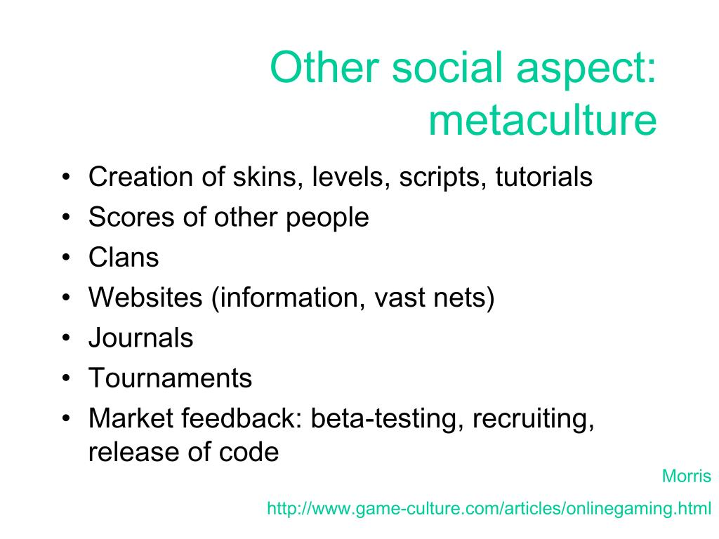 Other social aspect: metaculture