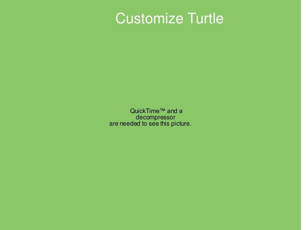 Customize Turtle