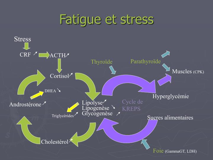 Fatigue et stress