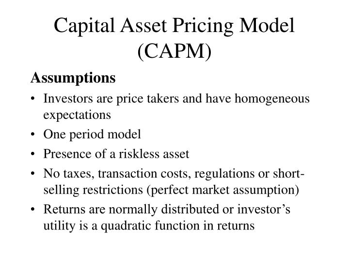 capital asset pricing model essay