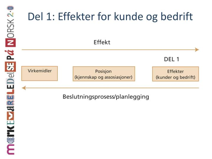 Del 1: Effekter for kunde og bedrift