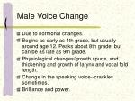 male voice change