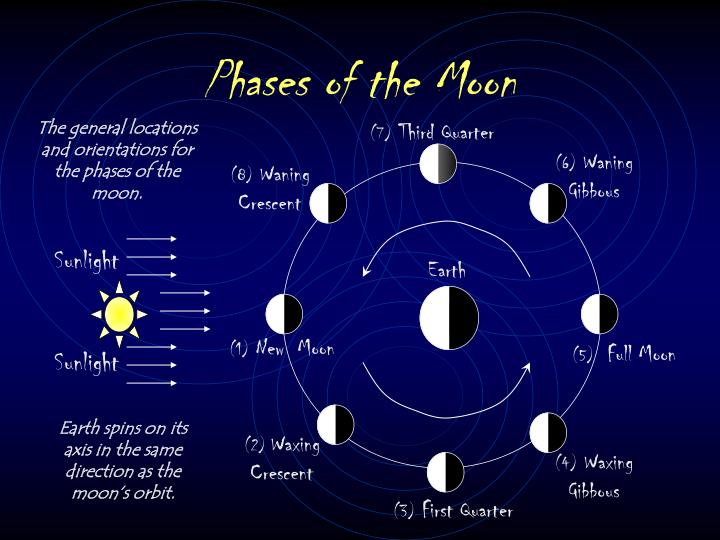 Phases of the moon l.jpg