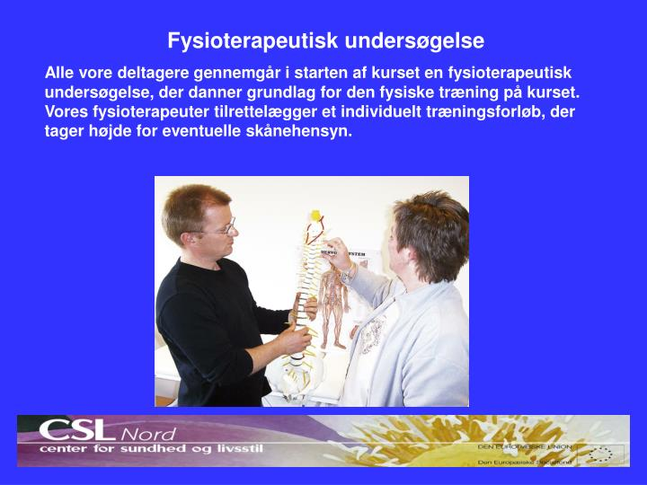 Fysioterapeutisk undersøgelse