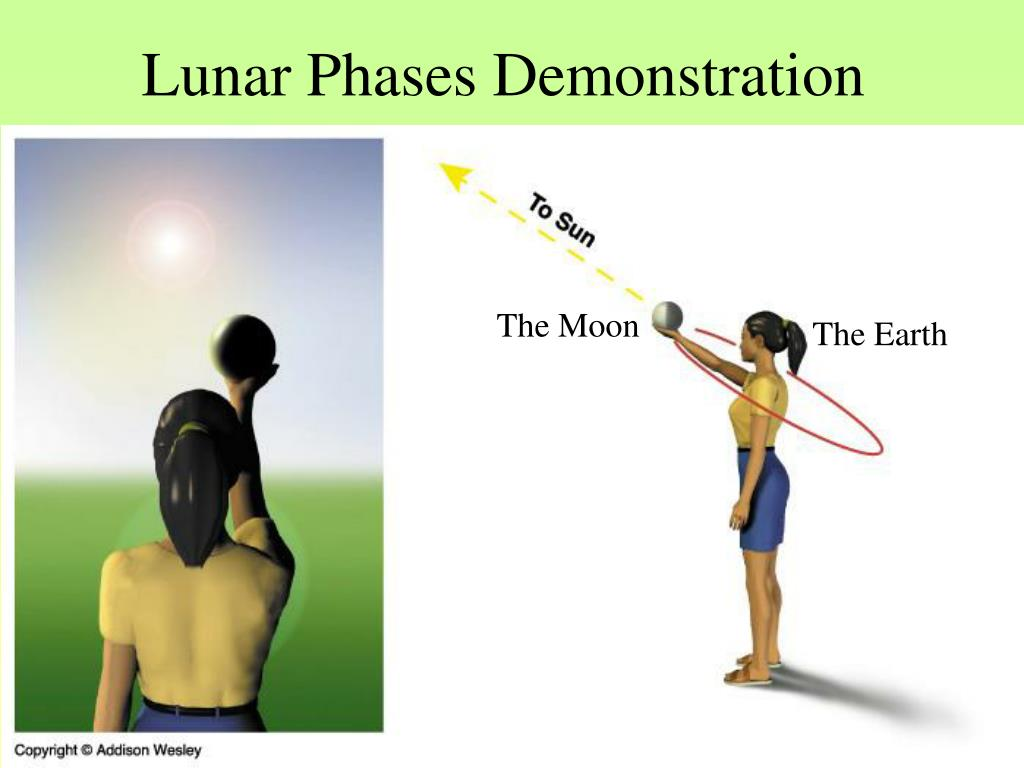 Lunar Phases Demonstration