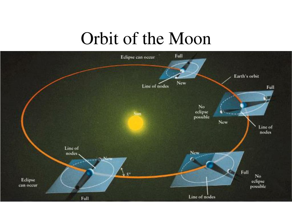 Orbit of the Moon