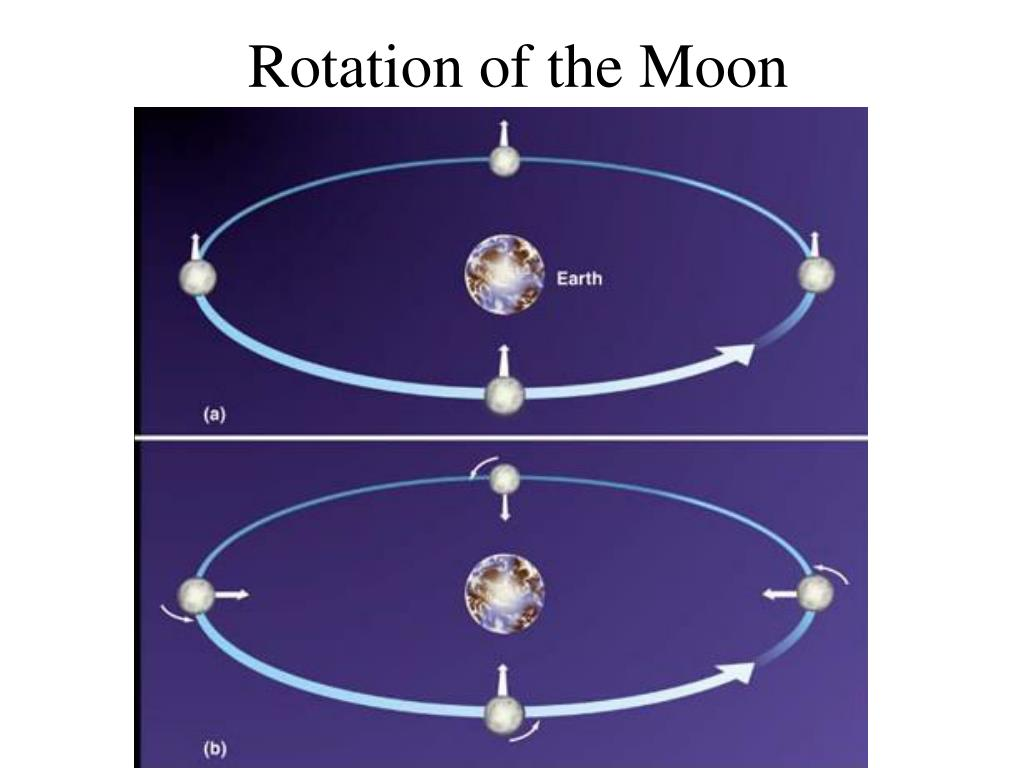 Rotation of the Moon
