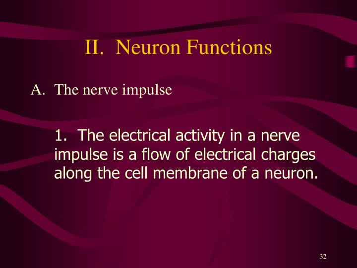 II.  Neuron Functions