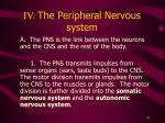 iv the peripheral nervous system