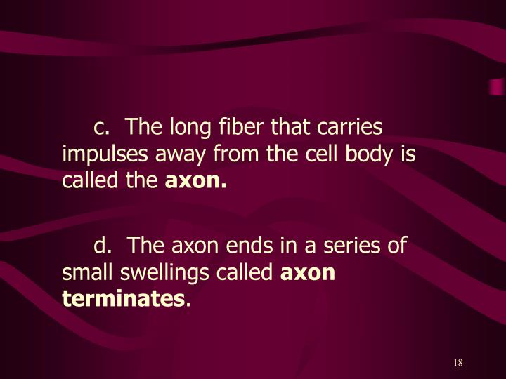 c.  The long fiber that carries impulses away from the cell body is called the