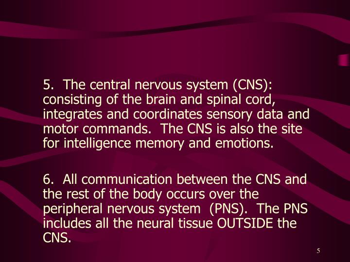 5.  The central nervous system (CNS): consisting of the brain and spinal cord, integrates and coordinates sensory data and motor commands.  The CNS is also the site for intelligence memory and emotions.