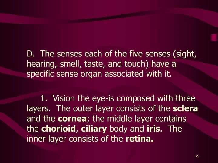 D.  The senses each of the five senses (sight, hearing, smell, taste, and touch) have a specific sense organ associated with it.