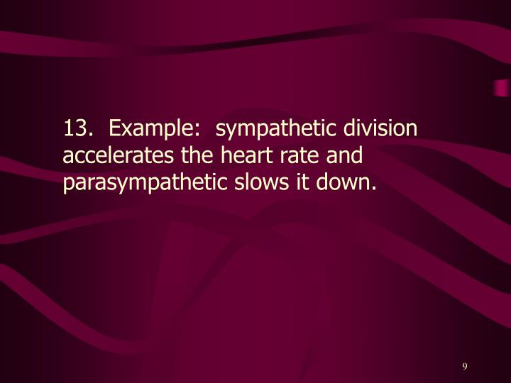 13.  Example:  sympathetic division accelerates the heart rate and parasympathetic slows it down.
