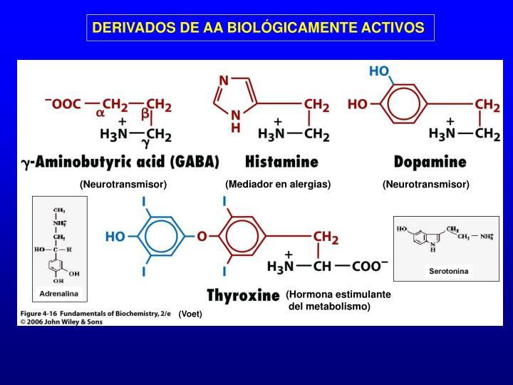 DERIVADOS DE AA BIOLÓGICAMENTE ACTIVOS
