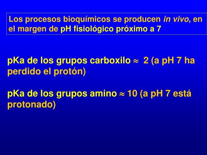 Los procesos bioquímicos se producen