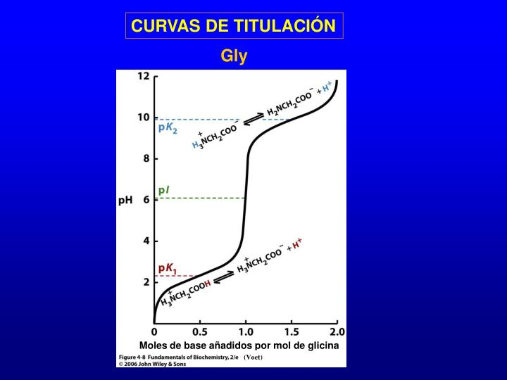 Moles de base añadidos por mol de glicina