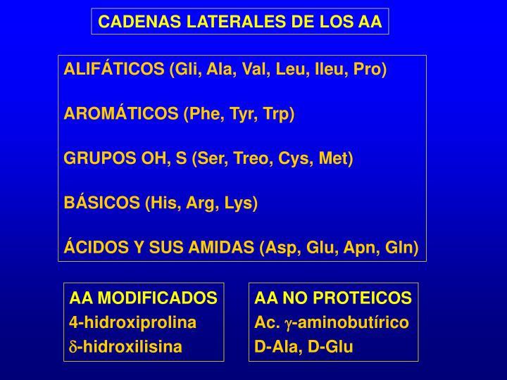 CADENAS LATERALES DE LOS AA