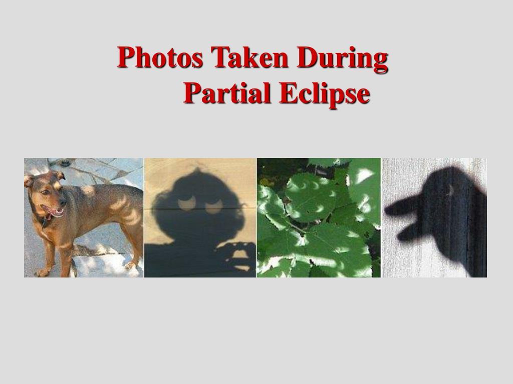 Photos Taken During Partial Eclipse