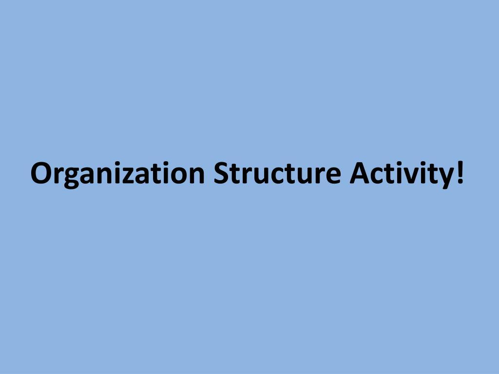 Organization Structure Activity!