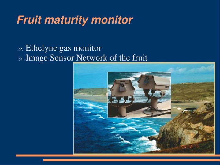 Fruit maturity monitor