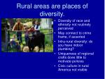 rural areas are places of diversity