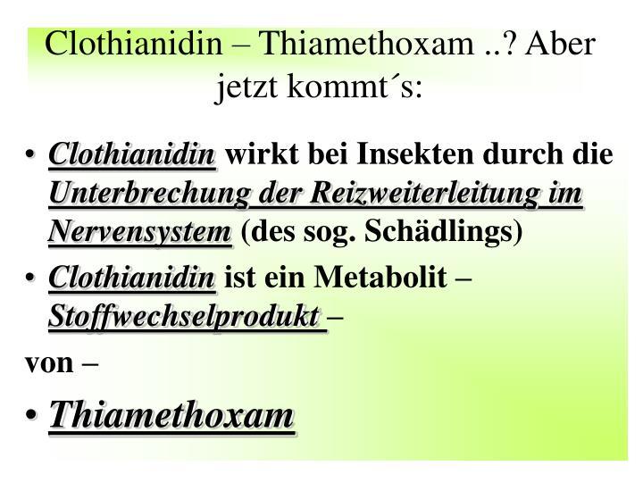 Clothianidin – Thiamethoxam ..? Aber jetzt kommt´s: