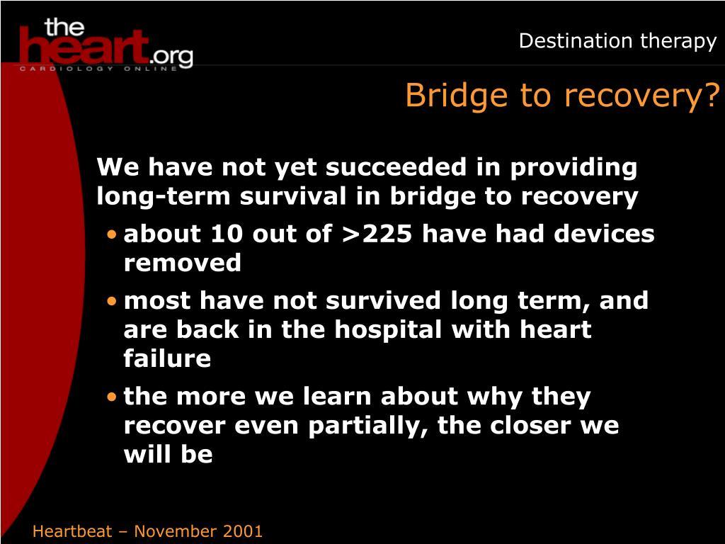 Bridge to recovery?