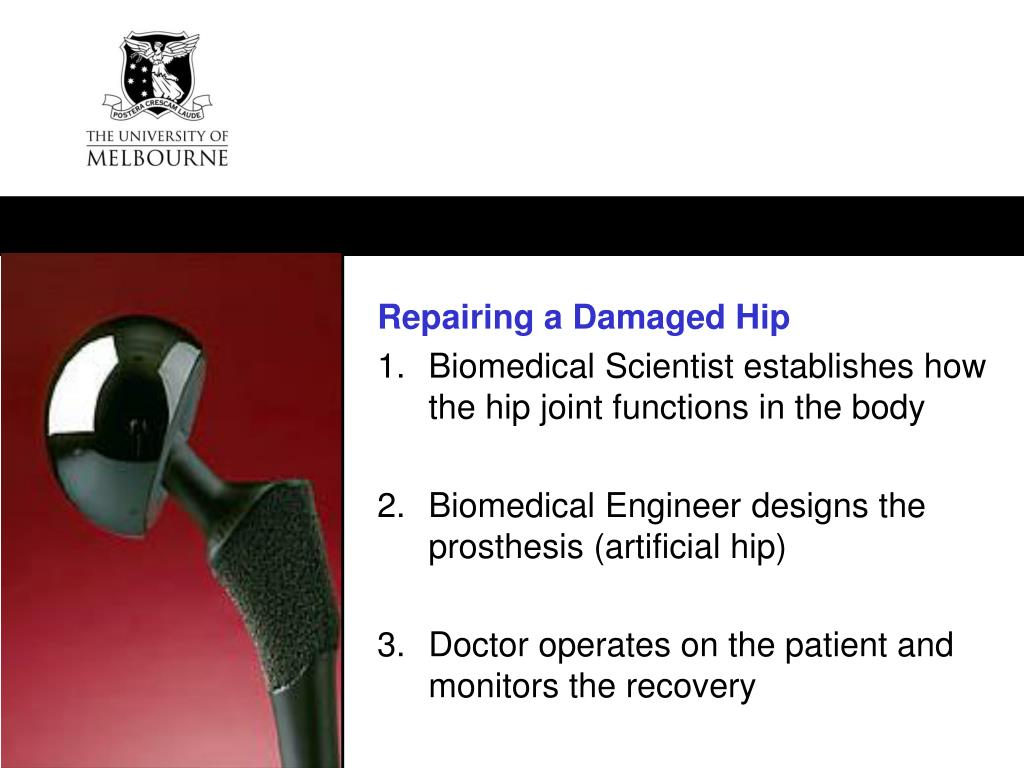 Repairing a Damaged Hip