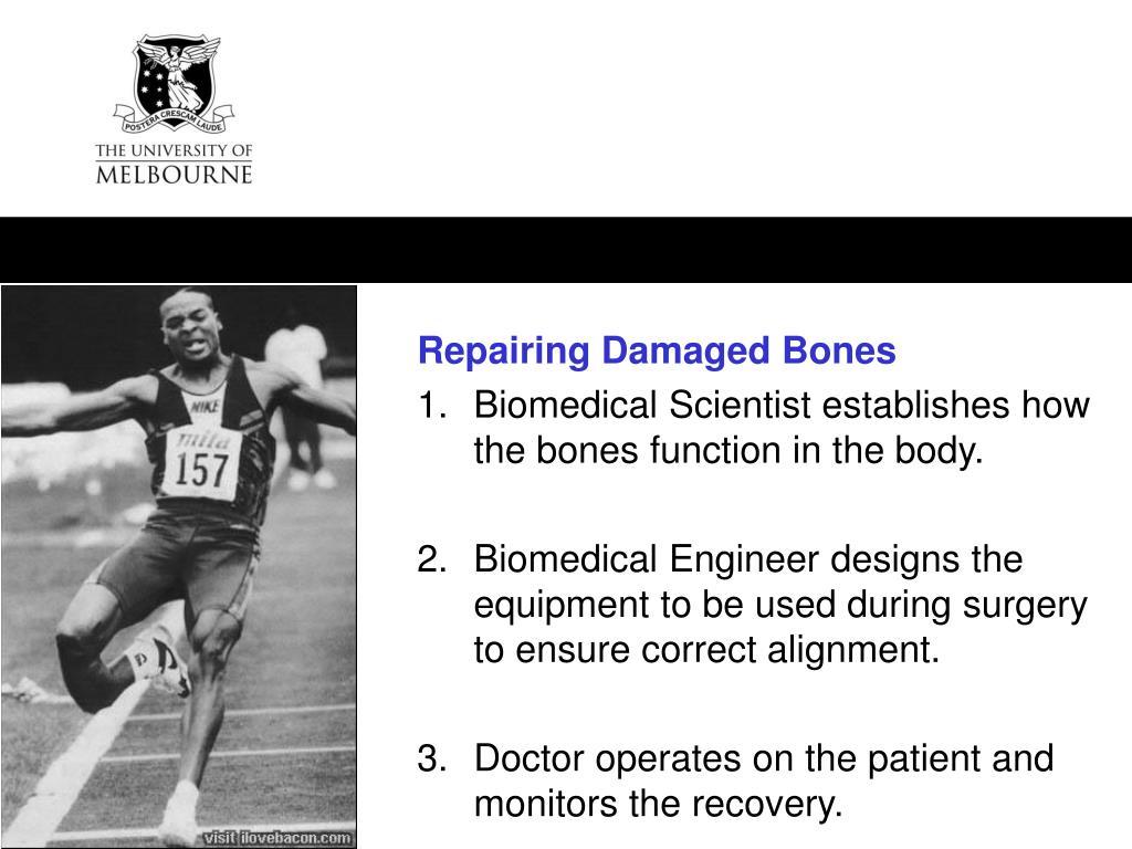 Repairing Damaged Bones