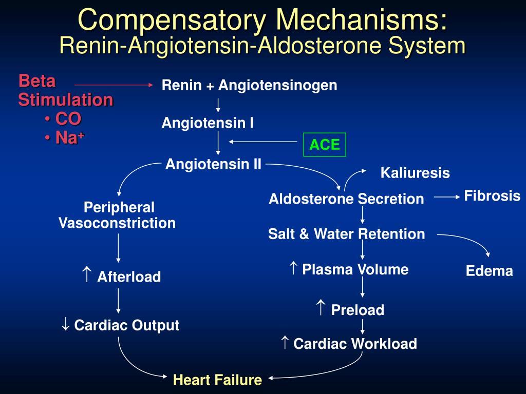 Compensatory Mechanisms: